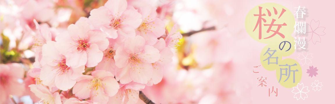 法隆寺周辺桜の名所