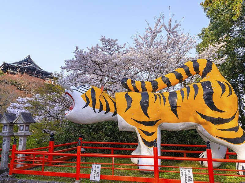 信貴山の桜と虎の像